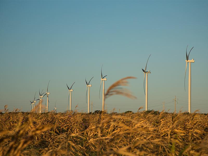 Luiz Ildefonso Simões Lopes   Brookfield Brasil   Transição para economia de carbono neutro é uma atrativa oportunidade de investimentos